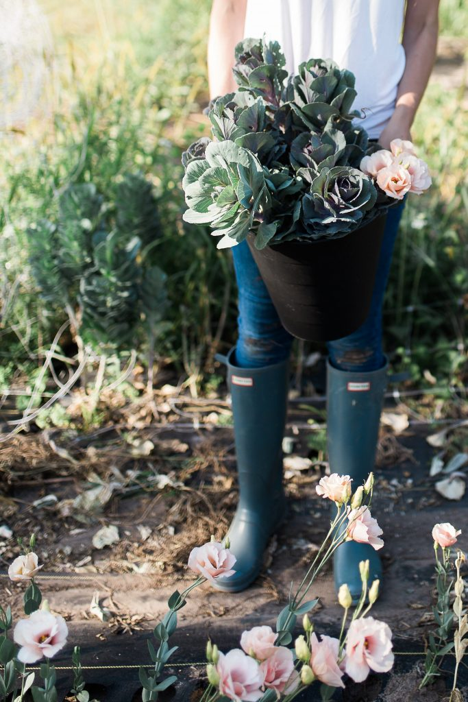 Woman in field holding flowering kale.